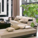 部屋の観葉植物のおしゃれな飾り方!コーディネート画像を紹介!