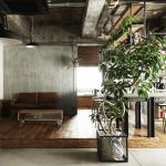 観葉植物でおしゃれな部屋に!インテリアに使う人気の観葉植物を紹介します!