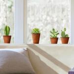 窓のインテリアの飾り方!カーテンやシールなどをDIYして窓辺をおしゃれな空間に!